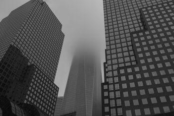 מגדלים בערפל