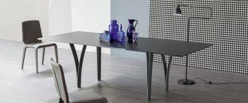 שולחן אוכל מלבני ארבע רגליים יחודיות זכוכית שחור מט